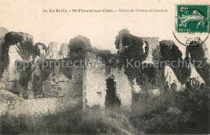 Saint Florent sur Cher Ruines du Chateau du Coudray Saint Florent sur Cher