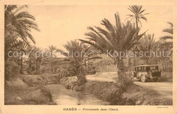 AK / Ansichtskarte Gabes Promenade dans l Oasis Gabes