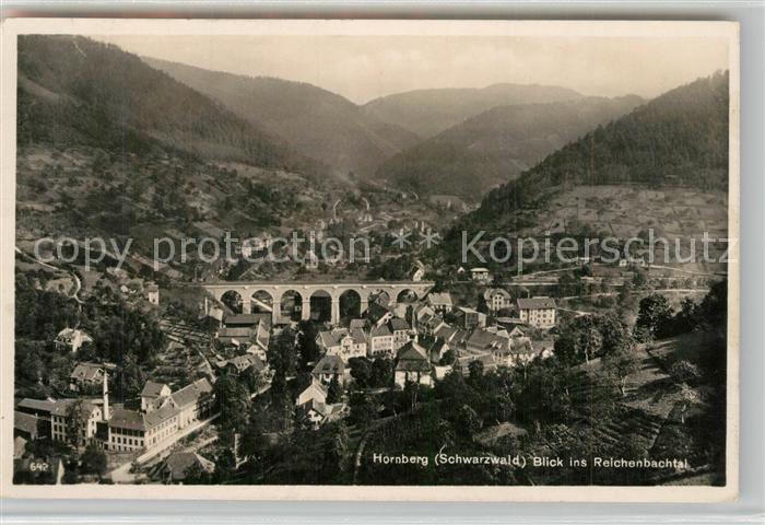 AK / Ansichtskarte Hornberg_Schwarzwald Fliegeraufnahme mit Reichenbachtal Hornberg Schwarzwald 0