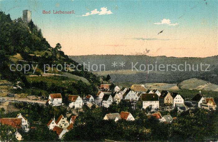 AK / Ansichtskarte Bad_Liebenzell Panorama Bad_Liebenzell 0