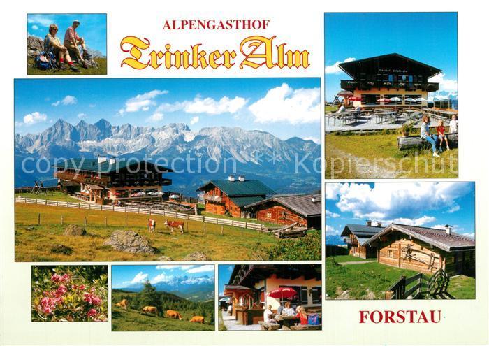 AK / Ansichtskarte Forstau Alpengasthof Trinker Alm Forstau