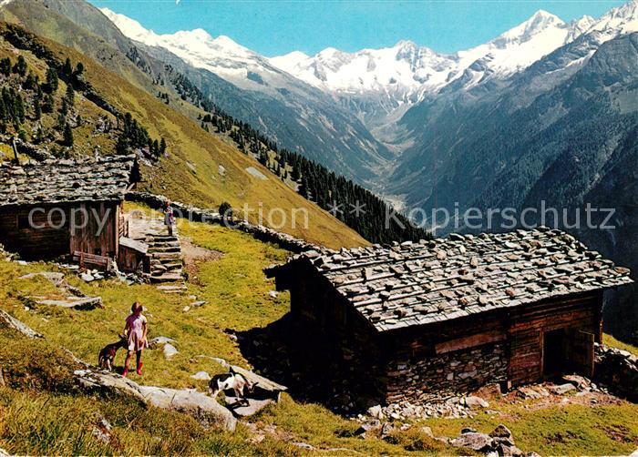 AK / Ansichtskarte Mayrhofen_Zillertal Filzenalm Mayrhofen_Zillertal