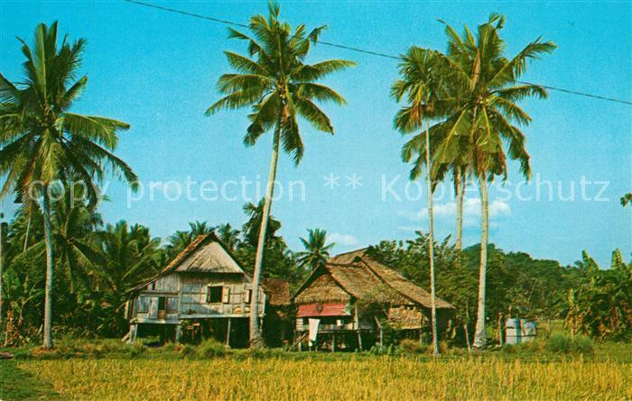 AK / Ansichtskarte Penang Malay Kampong Penang