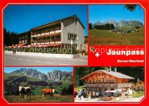 AK / Ansichtskarte Jaunpass Hotel des Alpes Camping Gastlosen Kiosk Jaunpass