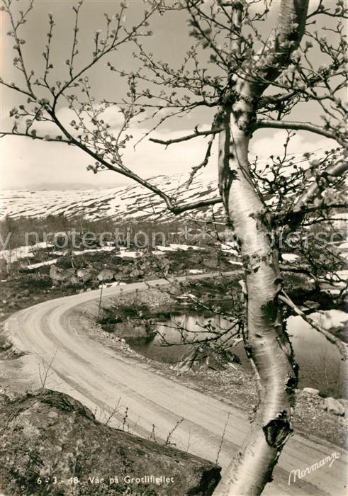 AK / Ansichtskarte Grotli Var pa Grotlifjellet Grotli