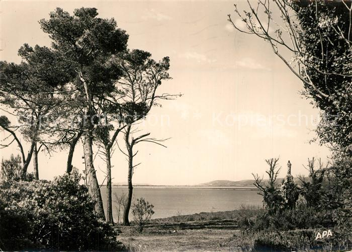 AK / Ansichtskarte Palavas les Flots_Herault Maguelonne la Vierge les Pins la Mer Palavas les Flots_Herault