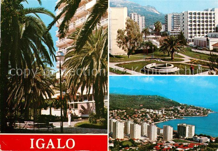 Igalo Hotel Park Kuestenpanorama Fliegeraufnahme Igalo