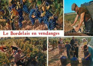 AK / Ansichtskarte Ernte_Landwirtschaft Bordelais en Vendanges Weinlese