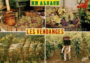 AK / Ansichtskarte Ernte_Landwirtschaft Weinlese Alsace Vendanges