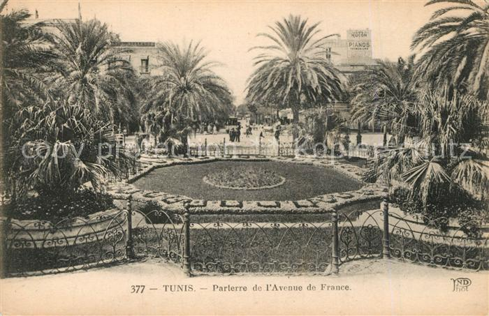 Tunis Parterre de l'Avenue de France Tunis
