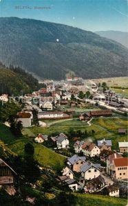 AK / Ansichtskarte Selztal Panorama Selztal