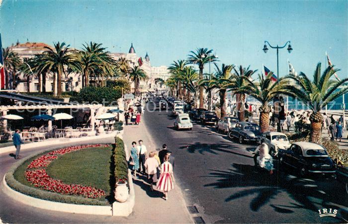 Cannes_Alpes Maritimes La Croisette Cannes Alpes Maritimes