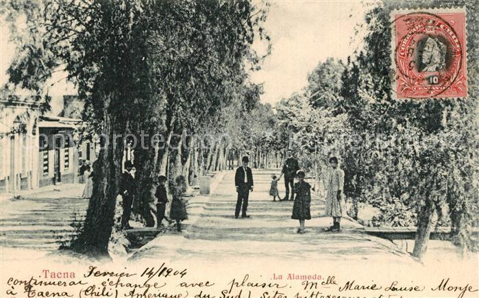 Tacna La Alameda Tacna