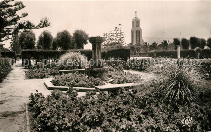 Fedala Contre jour dans les jardins et l eglise Fedala