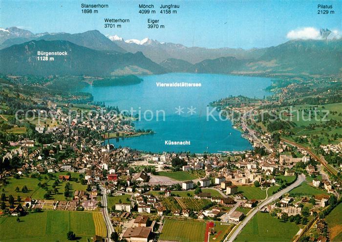 Kuessnacht Vierwaldstaettersee Alpenpanorama Fliegeraufnahme Kuessnacht