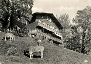 Braunwald_GL Kinderheim Chalet Flueblueemli Braunwald GL