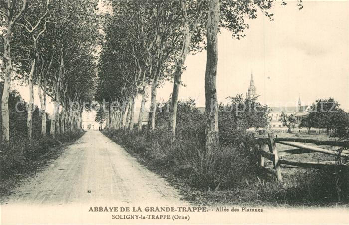 Soligny la Trappe Abbaye de la Grande Trappe Allee des Platanes Soligny la Trappe