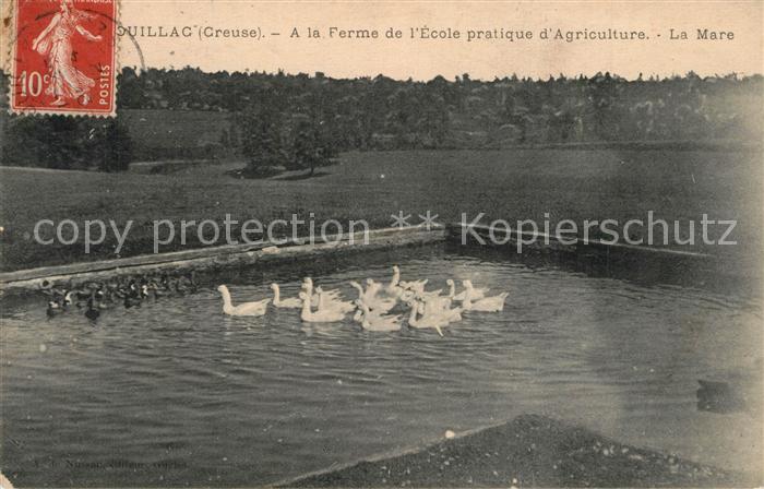 Genouillac_Creuse Ferme de l`Ecole practique d`Agriculture Genouillac_Creuse