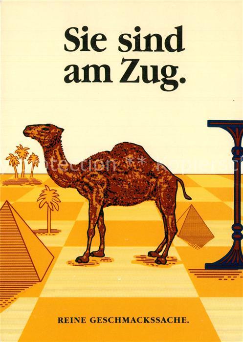 Zigarette Camel Werbung