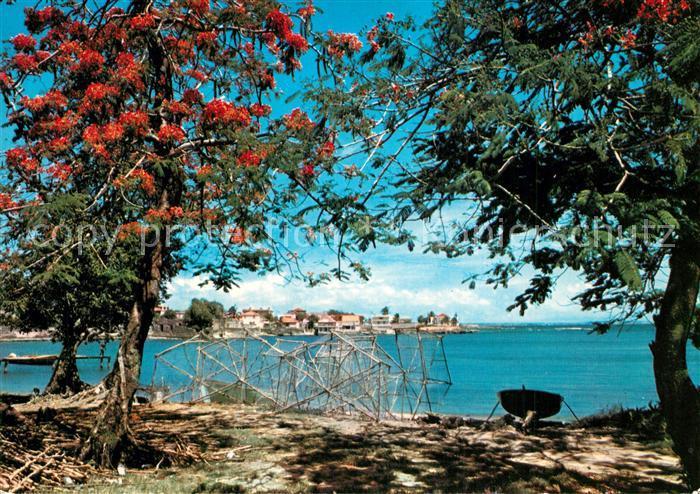 Guadeloupe L autre bord a Moule Guadeloupe