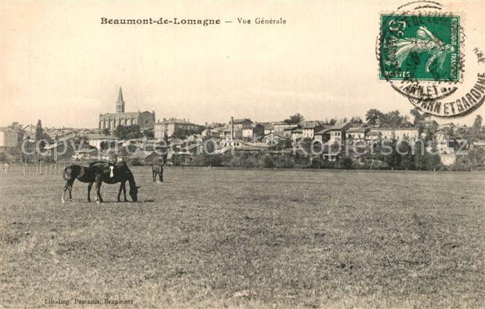 Beaumont de Lomagne Vue generale Beaumont de Lomagne