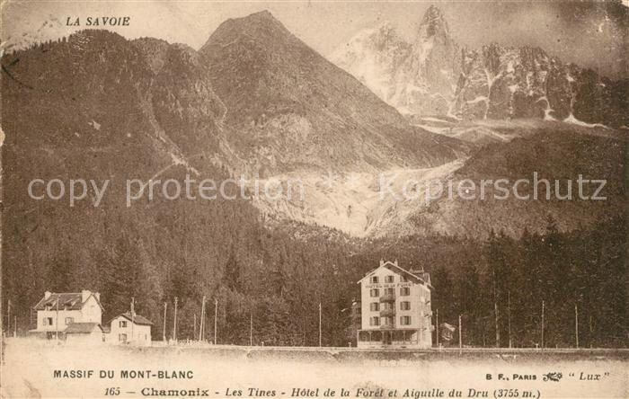 AK / Ansichtskarte Chamonix Les Tines Hotel de la Foret Aiguille du Dru Alpes Francaises Chamonix