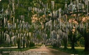 AK / Ansichtskarte New_Orleans_Louisiana Famous Avenue of Oak Trees Audubon Park