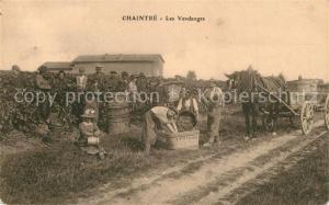 AK / Ansichtskarte Chaintre Les Vendanges Chaintre