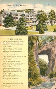 AK / Ansichtskarte Virginia_US State Natural Bridge Virginia_US State