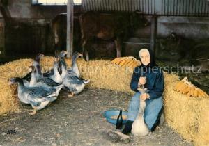 AK / Ansichtskarte Landwirtschaft Gaveuse d Oies G?nse