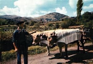 AK / Ansichtskarte Tiere Landwirtschaft Ochsenkarren