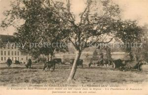 AK / Ansichtskarte Chailvet Chateau XVe siecle des vaches