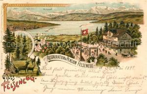 AK / Ansichtskarte Felsenegg Panorama Restauration und Pension Felsenegg Felsenegg