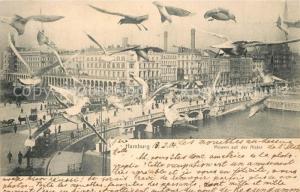 AK / Ansichtskarte Hamburg Moewen auf der Alster Hamburg