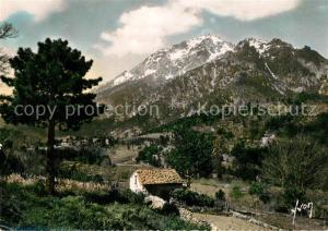 AK / Ansichtskarte Vizzavona Chaine du Monte d Oro Paysage Montagnes Vizzavona
