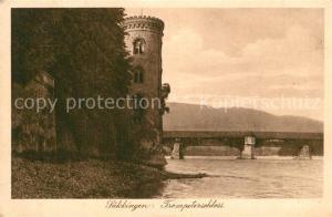 AK / Ansichtskarte Saeckingen_Bad Trompeterschloss Saeckingen_Bad