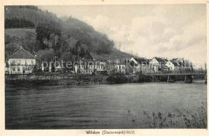 AK / Ansichtskarte Wildon Panorama Mur Bruecke Wildon
