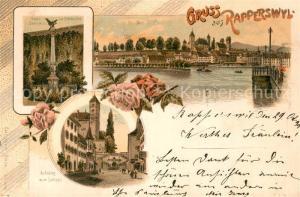 AK / Ansichtskarte Rapperswil_SG Aufstieg zum Schloss Polendenkmal Schloss Rapperswil SG