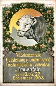 AK / Ansichtskarte Frauenfeld VII. Schweizerische Ausstellung Landwirtschaft Forstwirtschaft Gartenbau Frauenfeld