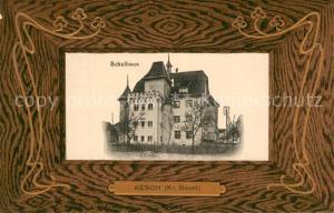 AK / Ansichtskarte Aesch_BL Schulhaus Aesch_BL