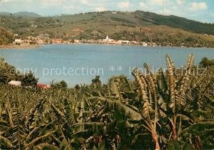 AK / Ansichtskarte Martinique View on the harbour and banana plantation Martinique