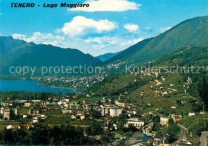 AK / Ansichtskarte Tenero Panorama Lago Maggiore Alpen Tenero