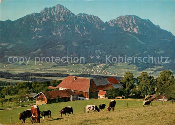 AK / Ansichtskarte Strobl Strobl Alm am Hoegel mit Hochstaufen Zwiesel Aufham Chiemgauer Alpen Strobl 0