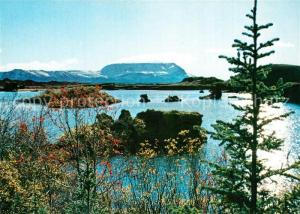 AK / Ansichtskarte Island Myvatnsee Landschaftspanorama Island