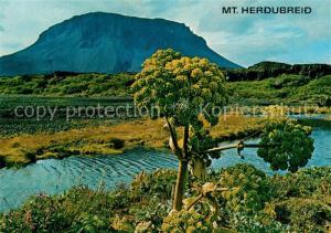 AK / Ansichtskarte Island Mount Herdubreid Landschaftspanorama Island