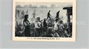AK / Ansichtskarte Militaria_Deutschland_WK2 Von Stalingrad bis N?rnberg Kriegsgefangene in Russland Eilebrecht Zigaretten