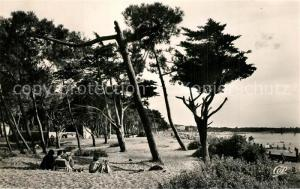 AK / Ansichtskarte Saint Brevin les Pins Les Pins en bordure de la plage Saint Brevin les Pins