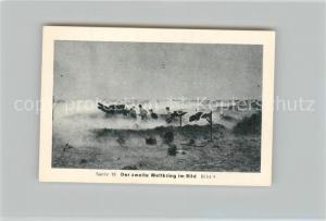 AK / Ansichtskarte Militaria_Deutschland_WK2 Von N?rnberg bis Stalingrad Rommel Halt bei El Alamein Eilebrecht Zigaretten