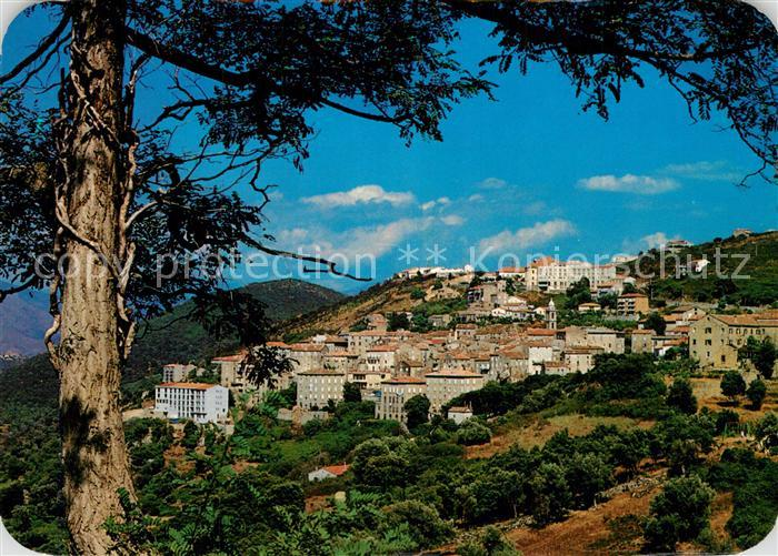 AK / Ansichtskarte Sartene Vue generale de la ville batie en amphitheatre Sartene 0
