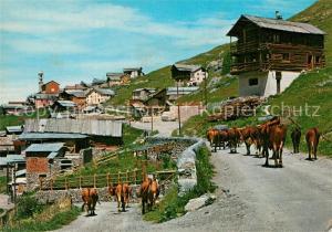 AK / Ansichtskarte Saint Veran Le plus haut village d Europe des vaches Saint Veran